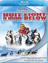 Picture of Eight Below / Huit en Dessous (Bilingual) [Blu-ray]