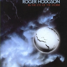 Picture of IN THE EYE OF THE STORM by HODGSON ROGER