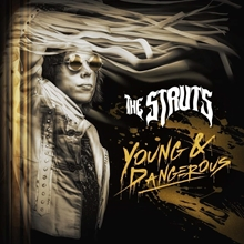 Picture of YOUNG AND DANGEROUS by STRUTS,THE