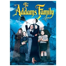 Picture of The Addams Family [DVD]