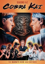 Picture of Cobra Kai Season 1 and Season 2 [DVD]