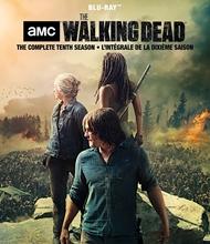 Picture of The Walking Dead: Season 10 [Blu-ray]