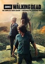 Picture of The Walking Dead: Season 10 [DVD]