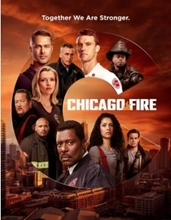 Picture of Chicago Fire: Season Nine [DVD]
