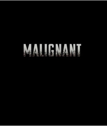 Picture of Malignant [Blu-ray]